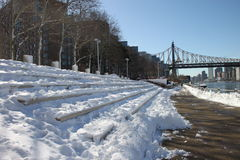 Roosevelt Island in winter Royalty Free Stock Photo