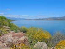 Roosevelt Lake in de Lente Stock Foto