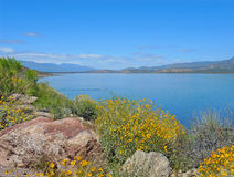 Roosevelt Lake in Spring. The shores around Roosevelt Lake near Tonto National Monument, are surrounded with blooming foliage in spring Stock Photo