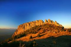 Rooster's grzebień od Gutin gór, Rumunia fotografia royalty free