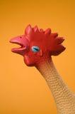 rooster Arkivbild