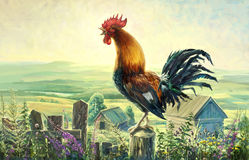 Rooster. Raster illustration. Here I would like to pass the morning light and a loud rooster song Royalty Free Stock Photography