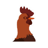 Rooster animal farm pet character icon. Vector graphic Stock Images