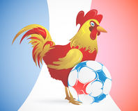Rooster as symbol of France with soccer ball Stock Image