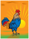 Rooster with background Royalty Free Stock Photos