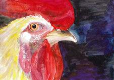 Rooster. Beautiful colorful and bright watercolor rooster. Hand drawn illustration for your graphic design. Cock - Symbol of New Year 2017 Stock Images