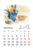Rooster. Beautiful colorful and bright watercolor rooster. Hand drawn illustration for your graphic design. Cock - Symbol of New Year 2017 Royalty Free Stock Image