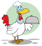 Rooster bird chef Royalty Free Stock Photography