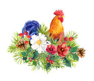 Rooster bird cock , winter flowers, christmas tree, mistletoe. Watercolor for greeting card, label, new year design Royalty Free Stock Image