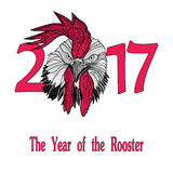Rooster bird concept of Chinese New Year of the Rooster. Vector hand drawn sketch illustration Stock Photos