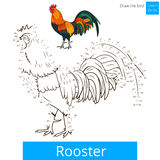 Rooster bird learn to draw vector. Rooster learn birds educational game learn to draw vector illustration Stock Photography