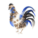 Rooster blue brown watercolor. Silhouette of the cock. Sketch style. Watercolor illustration. Brush drawings. Chinese New Year 2017 Stock Photos