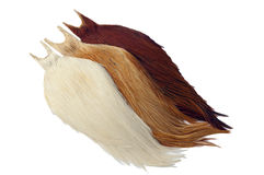 Rooster Cape Stock Photo