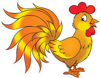 Rooster Cartoon Illustration Stock Photo