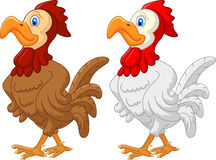 Rooster cartoon Stock Images