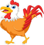 Rooster cartoon running Stock Images