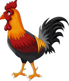 Rooster cartoon for your design Stock Image