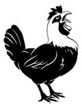 Rooster chicken crowing Royalty Free Stock Photos