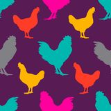 Rooster and chicken. Muilticolor silhouette  on violet background. Vector seamless pattern with poultry birds.  Stock Photography