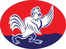 Rooster Chicken Pointing Wing Cartoon Stock Image
