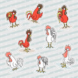 Rooster, chicken sticker patch, the symbol of the new year. Stock Photography