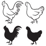 Rooster (cock) And Chicken Royalty Free Stock Image