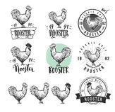 Rooster. Cock. Chicken product logotypes set. Hen meat and eggs vintage produce elements. Badges and design elements for Stock Photo