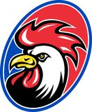 Rooster cockerel cock head mascot Stock Photography