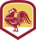 Rooster Cockerel Crowing Side Woodcut Shield Royalty Free Stock Photos