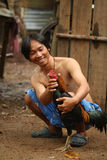 Rooster before cockfighting Stock Photography
