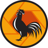 Rooster Crowing Shutter Circle Retro royalty free illustration