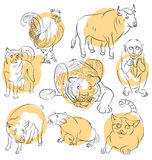 Rooster, dog, pig, rat, cat, monkey, tiger and ox Royalty Free Stock Images