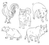 Rooster, dog, pig, rat and ox Royalty Free Stock Photography