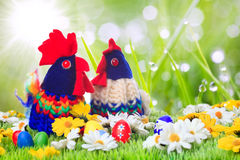 Rooster egg cozy on a meadow space for text Stock Image