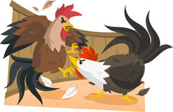 Rooster fight illustration. Cock fights, rooster fight. Vector illustration cartoon Stock Photography