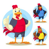 The Rooster Royalty Free Stock Photo