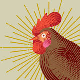 Rooster with graphic light ray. Engraving style. Logo, icon, greeting cards element for New Year`s r design. Symbol of new year 2017 .Chinese calendar. Vector Stock Photo