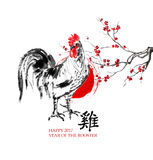 Rooster greeting card. Stock Image