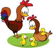 Rooster, hen and chickens cartoon Stock Photography