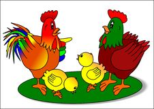 Rooster hen and chicks. Holiday illustration nature animal chicken royalty free illustration