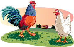 Rooster and hen Stock Photo