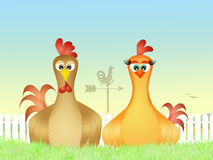 Rooster and hen in the nest Royalty Free Stock Images
