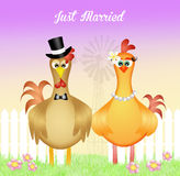 Rooster and hen spouses Royalty Free Stock Photography