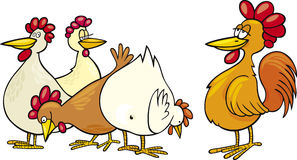 Rooster and hens. Cartoon Illustration of rooster and hens Royalty Free Stock Photos