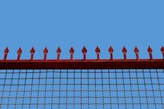 Rooster met pieken tegen de omheining van de hemel vrouwelijke universiteit Royalty-vrije Stock Afbeeldingen