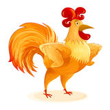 Rooster New Year Symbol Cartoon Character Colorful Isolated Arms Stock Image