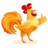 Rooster New Year Symbol Cartoon Character Colorful Isolated  Stock Photos