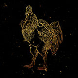 Rooster on nightsky background Stock Image
