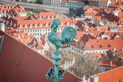 Rooster - one of the symbols of Prague. Royalty Free Stock Photography