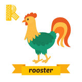 Rooster. R letter. Cute children animal alphabet in vector. Funn Stock Photography
